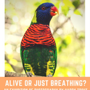 Alive or Just Breathing